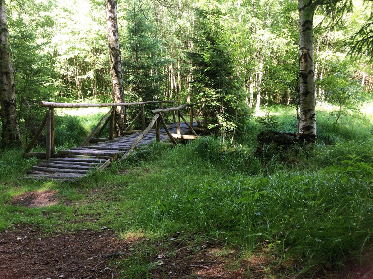 Brücke über die rote Weißeritz nach Schellerhau